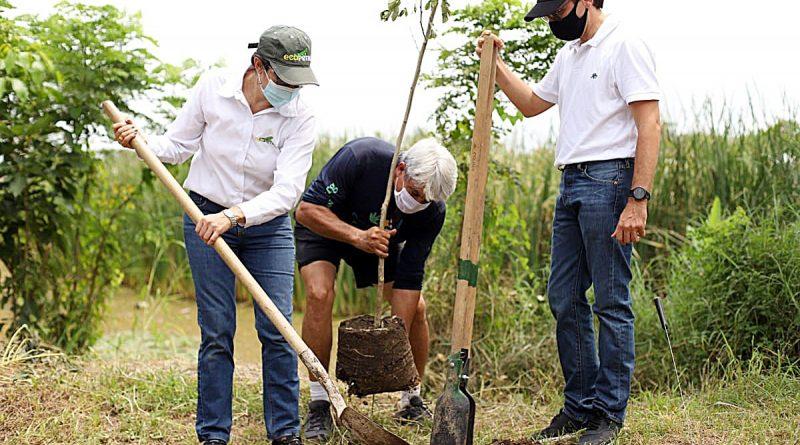 "Grupo Ecopetrol se adhiere a la iniciativa ""Sembrar Nos Une"" con 6 millones de árboles"